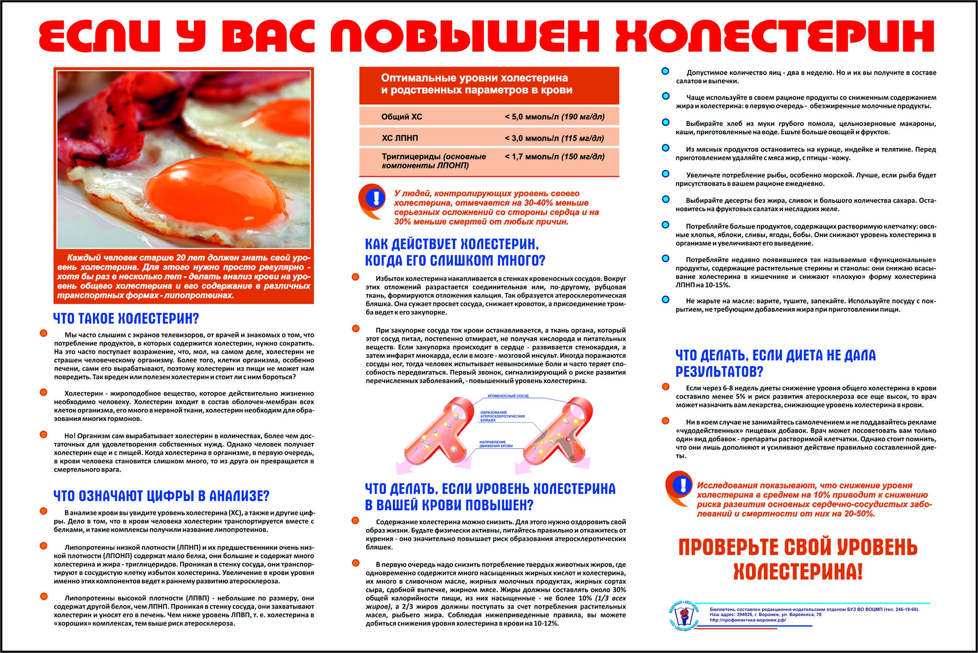 профилактика против паразитов у человека травами